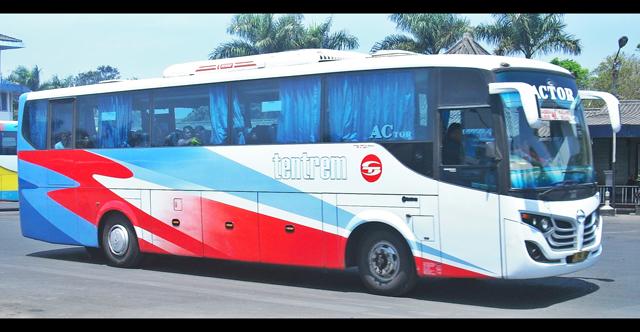 Tentrem bus 2